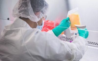 Stem Cell Sources: Adipose vs. Bone Marrow